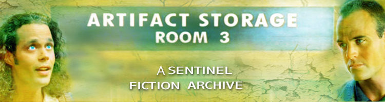 Artifact Storage Room 3 Banner